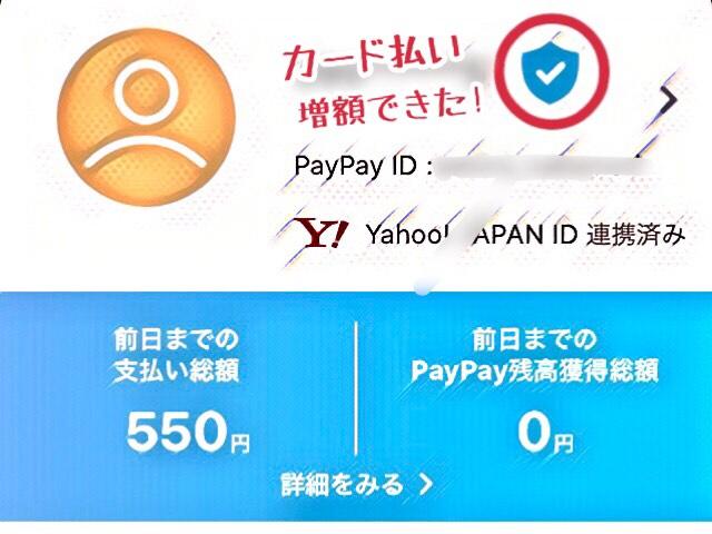 PayPayでカード払いする時の上限額は、4つの設定で即増額できた!