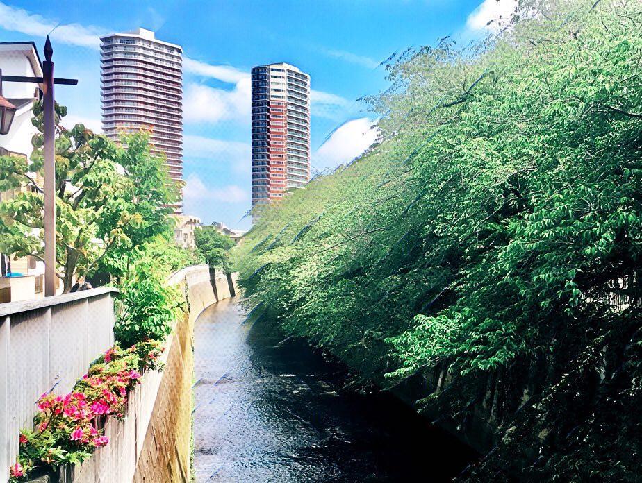 東京都中野区東中野だが、神田川を挟んで隣は新宿区北新宿。東中野のタワーマンション方向を撮影