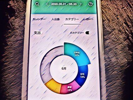 家系集計(ポイントやクーポンを使うとどれ位得するかテストチャレンジ)