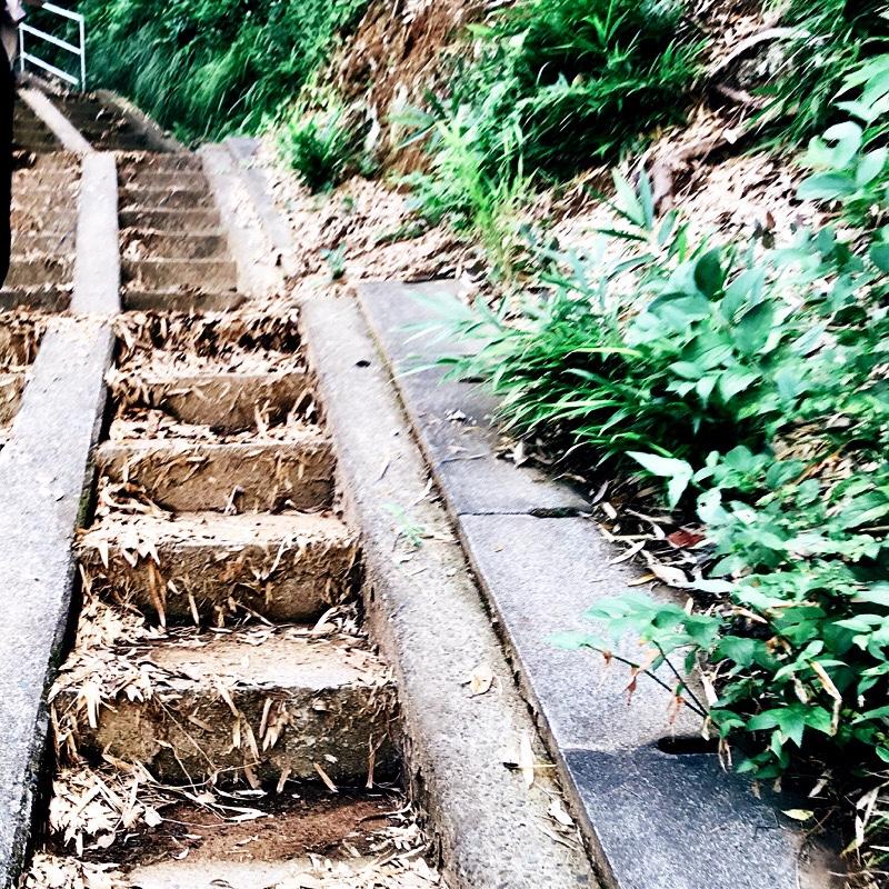 千葉県柏市の風景 13 - 松ヶ崎城址に向かう石段