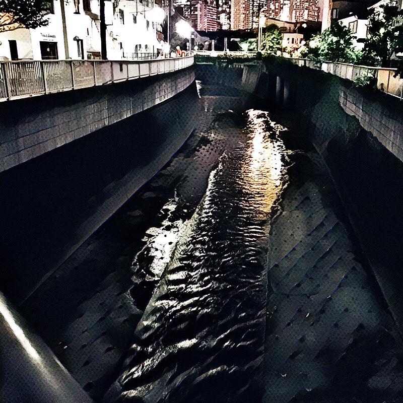 大久保通りと神田川が交わる辺り (柏橋) の様子 (夏の夕暮れ) 6