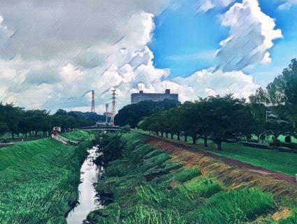 千葉県柏市の風景 1 - 大堀川リバーサイドパーク
