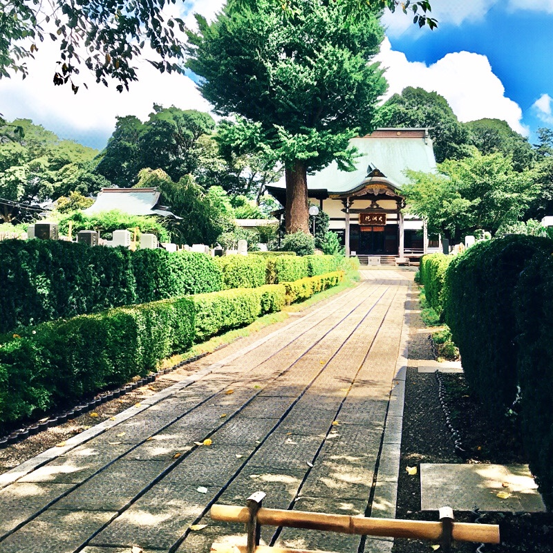 千葉県柏市の風景 12 大洞寺