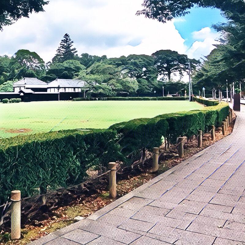 千葉県柏市の風景 11 - 吉田家歴史公園の遠景