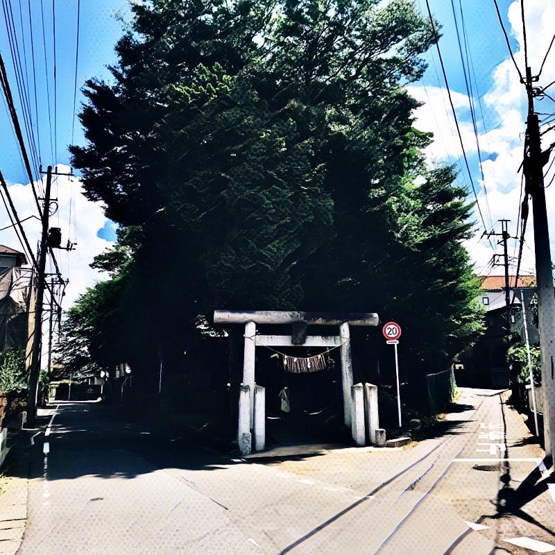 千葉県柏市の風景 20 須賀神社