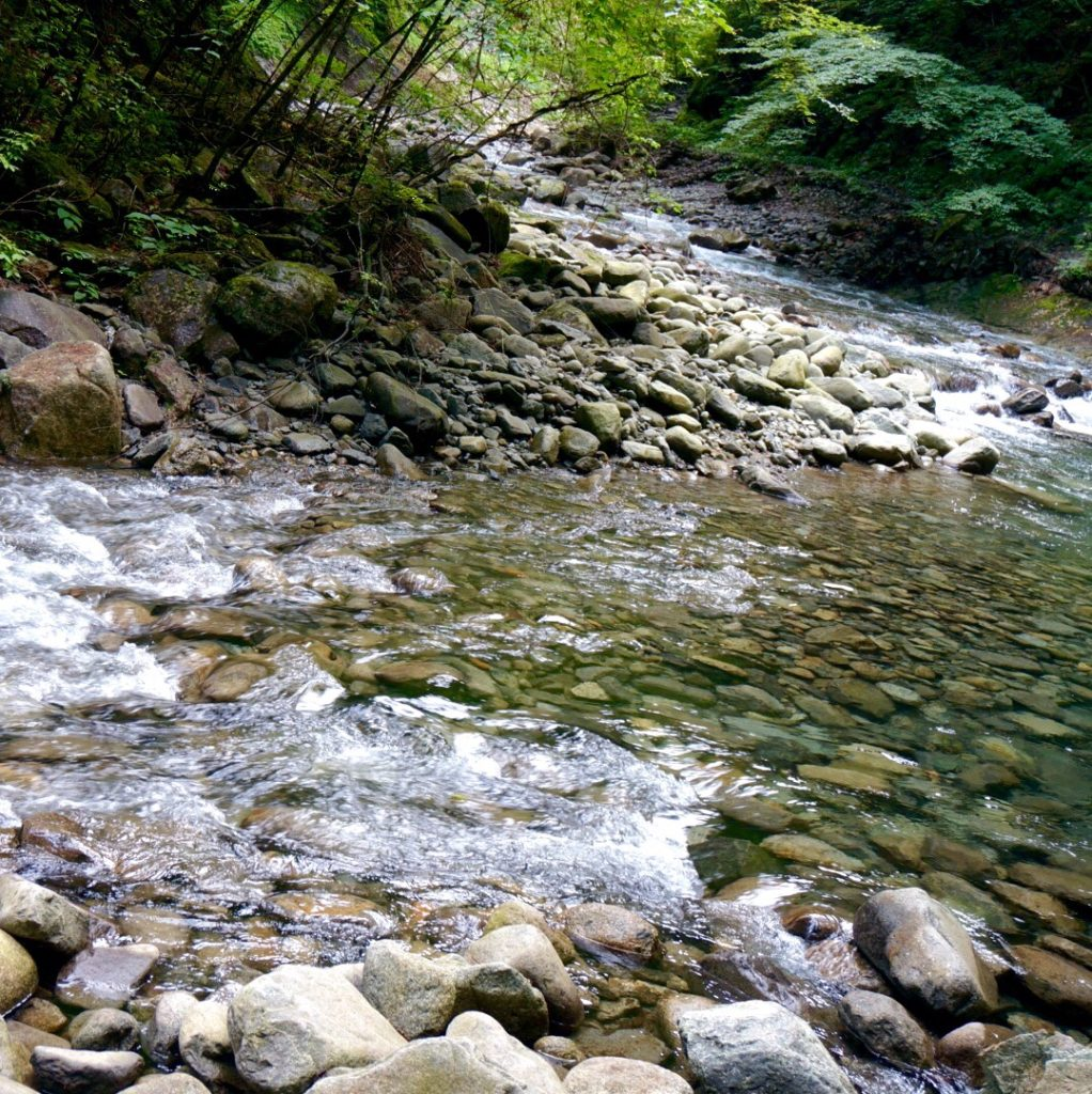 山梨県・西沢渓谷 Japan Nature - D15