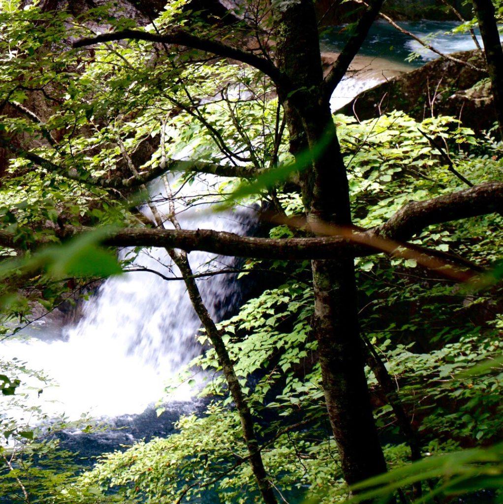 山梨県・西沢渓谷 Japan Nature - D20