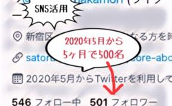 ツイッターのフォロワーを5ヶ月で500人に増やした方法を公開 2